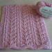 Baby Fern Stitch Dishcloth