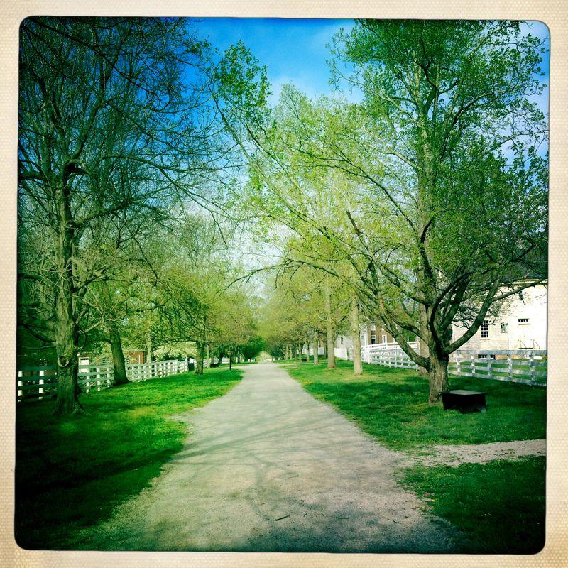 Shaker path