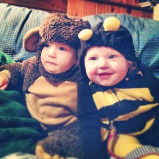 Bee and monkey